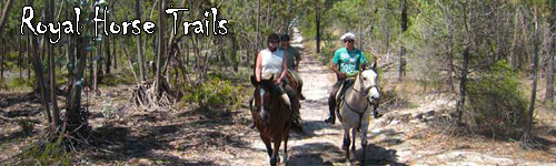 Royal Horse Trails
