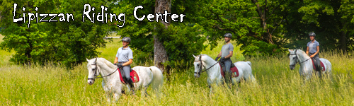Lipizzan Riding Center