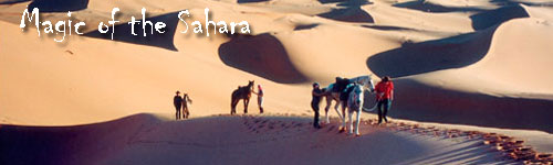 Magic of the Sahara