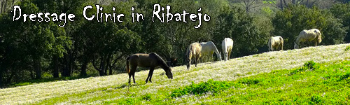 Dressage Clinic in Ribatejo