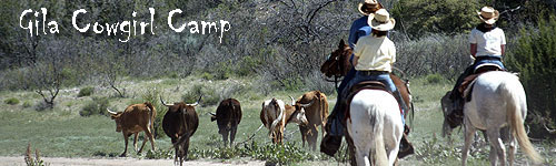 Gila Cowgirl Camp
