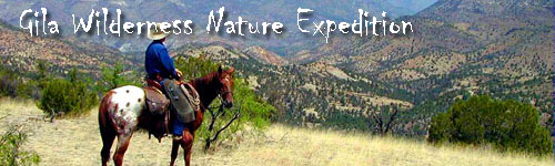 Gila Wilderness Nature Expedition