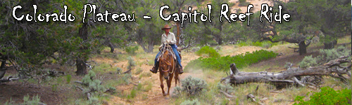 Colorado Plateau - Capitol Reef Ride