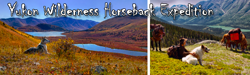 Yukon Wilderness Horseback Expedition