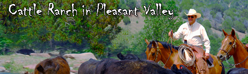 Cattle Ranch in Pleasant Valley