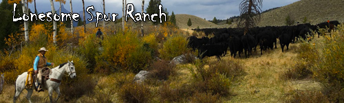 Lonesome Spur Ranch