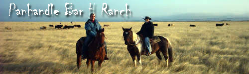 Panhandle Bar H Ranch