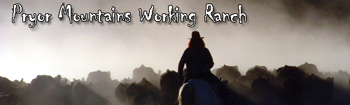 Pryor Mountains Working Ranch