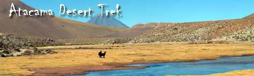 Hiking - Atacama Desert Trek