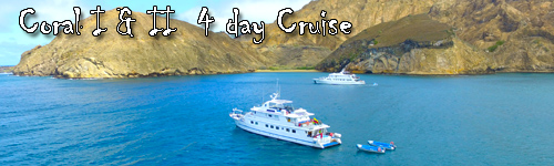 Coral I & II  4 day Cruise