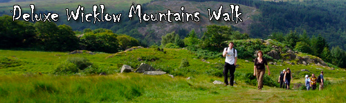 Deluxe Wicklow Mountains Walk