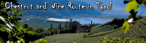 Chestnut and Wine Route in Tyrol