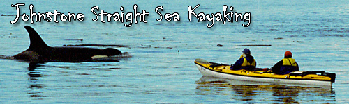 Johnstone Straight Sea Kayaking