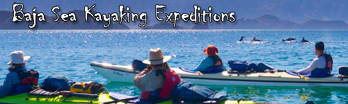 Baja Sea Kayaking Expeditions