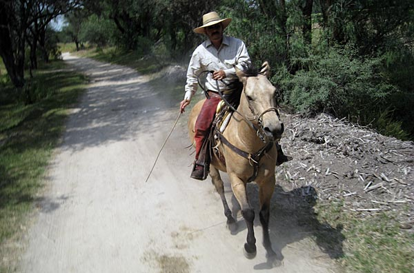 Riding at Hacienda Sepulveda