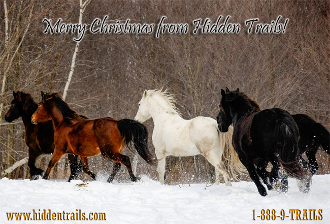 2014 Merry Christmas from Hidden Trails!