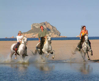 Beach gallop in Catalonia, Spain