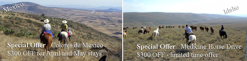 Special Offers for horseback riding trips in Mexico and Horse Drive in Idaho