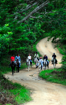 On Horseback in Mexico with Hidden Trails