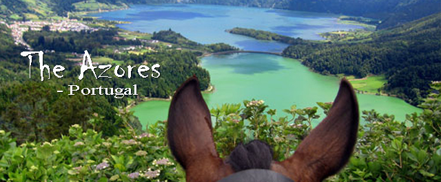 Horseback riding in the Azores, Portugal